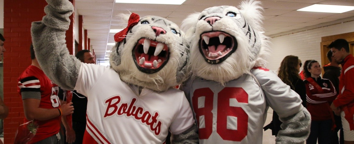 Bobby & Betty Bobcat